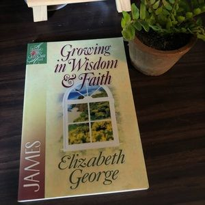 Other - Growing in wisdom and faith